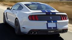 Shelby Mustang Owners Sue Ford For Fraud And Breach Of Warranty Due To Overheating Issues 2015 Ford Mustang, Shelby Mustang, Ford Mustangs, Ford Shelby, Ford Gt, Ford 2016, Dodge Challenger Srt, Cobra For Sale, Mustang Wallpaper