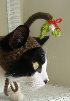 Under the Mistletoe Christmas Cat Hat. $18.00, via Etsy. I don't like most outfits made for animals, but this is cute.