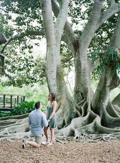 He proposed under the most beautiful and unique tree, and their story has us swooning. <3