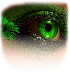 Color Splash Photo, Color Vision, Splash Photography, Irish Eyes, Green Goddess, Eye Art, Cool Eyes, Beautiful Eyes, Green Eyes