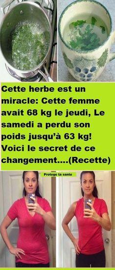 Cette herbe est un miracle: Cette femme avait 68 kg le jeudi, Le samedi a perdu son poids jusqu'à 63 kg! Voici le secret de ce changement….(Recette)