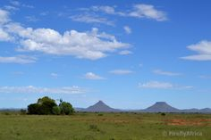 Three Karoo Heartland icons, all in one picture. Big open sky, Karoo koppies (in this case Koffiebus and Teebus outside Steynsburg) a. Port Elizabeth, Heartland, One Pic, The Outsiders, Landscapes, Icons, Sky, Mountains, Pictures