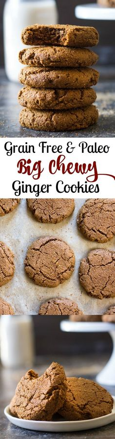 Big soft and chewy Paleo gingerbread cookies (Grain free, gluten free, dairy free). It would be awesome to have a paleo option for Christmas! Paleo Dessert, Low Carb Dessert, Healthy Desserts, Camping Desserts, Small Desserts, Easy Desserts, Dessert Recipes, Gourmet Cookies, Paleo Cookies