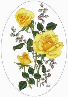 Yellow Roses A4 (Medium) embroidery panel, ready to embroider | Di van Niekerk