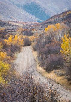 Jeremy ranch road utah in fall colors
