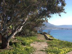 Charming Spots of #Paros #GreekIslands  Γοητευτικά σημεία της Πάρου!  Map: https://maps.google.com/maps/ms?msid=213944240734415462820.0004f2d3e3103f8d93783&msa=0