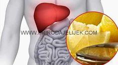 Jetra učestvuje u procesu obnavljanja krvi. Takođe, pomaže pri jačanju i stimulaciji probave u organizmu. Obavlja još jednu važnu funkciju: ona čisti krv i eliminiše sve toksine i nečistoće iz nje. Otuda je jasno da je čista jetra – zdravlje, vitalnost, energija, lijep izgled i dobro raspoloženje. Najbolje sredstvo za prevenciju za zdravu jetru je …