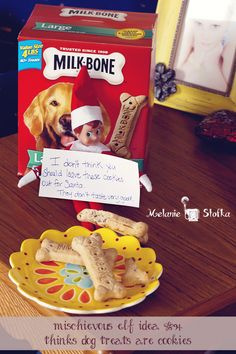 Elf on the Shelf thinks dog treats are cookies for Santa!  Site has lots of great elf pranks!