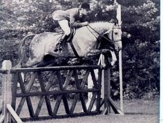 George Morris and Flying Along. His Eq! I guess that's why he's the Godfather...