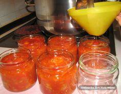SATARAS U TEGLI  70 dag crvenog luka 1 kg paprike babure 0,5 kg patliđana 1,5 kg rajčice 2 dl ulja sol, papar