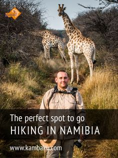 Hiking through the bush savanna – explore the Namibian wilderness at the Kambaku Wildlife Reserve. More than 60 km of hiking trails await you at our lodge.  #hiking #kambaku #trekking #namibia #africa #afrika #safari #wilderness #bestlodge #adventure #savanna  #luxurylodge #safariresort #lodge #hikinginnamibia #bestsafari #holiday #travel