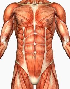 core strength minimizes lower limb injury