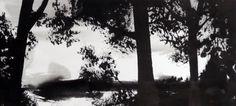 Galeries - Michel Pinosa - Encre sur papier - peinture