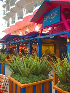 Sabor Modern Mexico   A vibrant dance across the plate and palate, this Royal Caribbean specialty dining option employs a long heritage of fresh, simple ingredients, reimagined in full bloom.