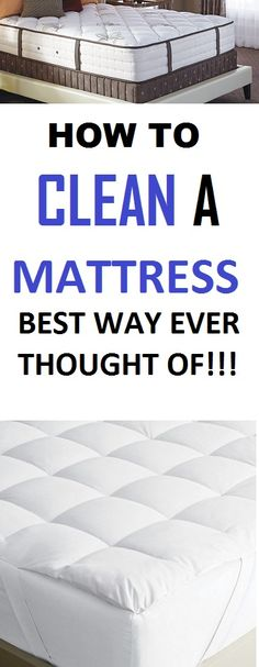 You might want to know this if having guests over or going to visit friends or family. It is of such great importance. I found out the hard way. #home #cleaning #cleaninghacks