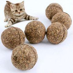 5pcs/lot Cat Catnip Toy Natural Catnip Ball Menthol Flavor for Cat Kitten Treats Edible Pet Product Cat Toy