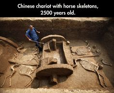 Amazing Findings In China
