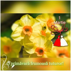 8 Martie, Beautiful Pictures, Art, Pretty Pictures