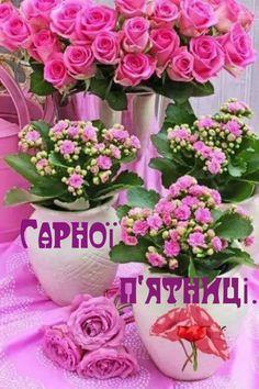 Rose, Floral Wreath, Wreaths, Ua, Decor, Flower Arrangements, Happy Monday, Bonjour, Polish