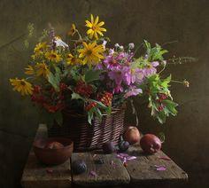 Still Life Photography Осыпаются сливы в саду…. © Marina Filatova