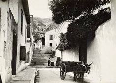 Αθήνα Old Photos, Vintage Photos, Greece Photography, Old City, The Neighbourhood, The Past, Black And White, History, Country
