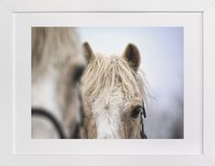 Yellow Horses by Meghan Benge at minted.com