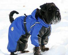 Miniature schnauzer dog snowsuit dogs winter dog coats winter dog coat
