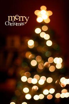 Elegant Christmas Lights Aesthetic