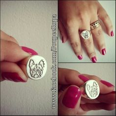 Ring Silver of French Bulldogs