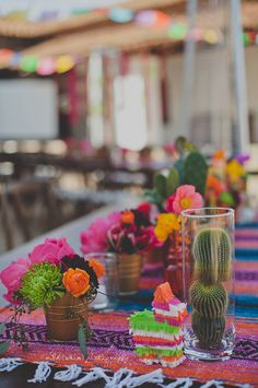 Cactus and vibrant colors for cocktail hour
