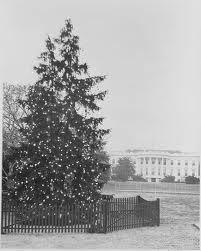 White House Christmas Tree