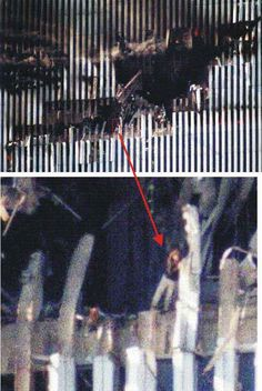 This woman is thought to be Edna Cintron, an employee on around the floor, North Tower of the World Trade Center World Trade Center, Trade Centre, We Will Never Forget, Lest We Forget, Nine Eleven, Moslem, North Tower, 11. September, Sad Day