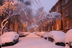 Winter Storm, Chicago, Illinois
