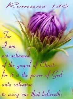 Romans 1:16 KJV