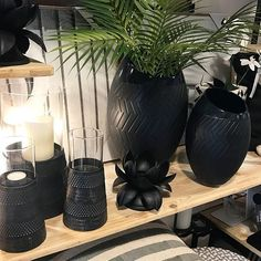 Just love black with natural timber and a touch of greenery. #mossinteriors #retail #warrnambool #victoria #destinationwarrnambool #shop3280 #homewares #australianretail #store #homewaresstore #retailer #shop #shopsmall #giftcard #shoplocal #style #fashion