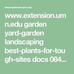 www.extension.umn.edu garden yard-garden landscaping best-plants-for-tough-sites docs 08464-complete.pdf