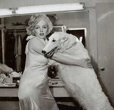 Avedon, Richard (b,1923)- Proofs- Marilyn Monroe w Borzoi, 1958, I (There are more in the series- I am amused that either Monroe or the Borzoi really, really wish they were elsewhere... - photos probably had something to do with MM re-doing a famous Jean Harlow photo- both below}