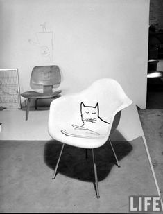 Peter Stackpole :: Charles Eames-designed chair that features a free-hand illustration of a cat (by artist Saul Steinberg), Santa Monica, California, August Plywood Furniture, Design Furniture, Plywood Chair, Concrete Furniture, Charles Eames, Old Chairs, Eames Chairs, High Chairs, Lounge Chairs