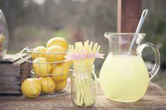 "Photo 11 of 31: Lemonade Stand / Birthday ""Lula's Lemonade Party"" | Catch My Party"