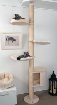 Deckenspanner Modell Luisa von Profeline in der Holzfarbe Weiss mit hängendem Katzenhaus. Deckenhohe Kratzbäume sind sehr elegant und leicht wirkende Katzenbäume, die zwischen Boden und Decke verspannt werden (kein Bohren erforderlich). #catsdiyshelves