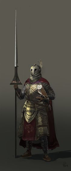 nicktheladd:  The Knights who give a hoot