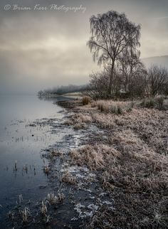 https://flic.kr/p/RzpXHH | St Mary's Loch - Ice On The Edge | St Mary's Loch - Ice On The Edge  Its back to another image from St Mary's Loch at the weekend and this time just for a change another tree;) some ice along the edge of the loch leading to the tree and approaching mist in the background.  St Mary's Loch, Scottish Borders  Sony A7RII  Sony FE16-35mm f4   All rights reserved © Brian Kerr Photography 2017