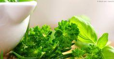 Agregar hierbas como el perejil, tomillo, manzanilla y ciertos vegetales a su alimentación podría ayudar a mejorar su capacidad mental, gracias a la apigenina. http://articulos.mercola.com/sitios/articulos/archivo/2016/01/07/hierbas-para-el-poder-mental.aspx