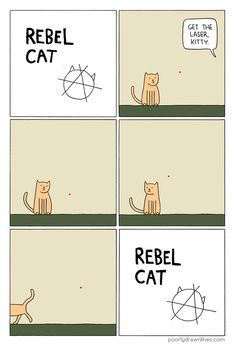 Funny pictures about Rebel Cat. Oh, and cool pics about Rebel Cat. Also, Rebel Cat photos. Cat Memes, Funny Memes, Hilarious, Stupid Memes, Cat Comics, Funny Comics, Crazy Cat Lady, Crazy Cats, Owning A Cat