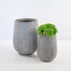 Complete your outdoor look with a unique planter or pot from Teak Warehouse. We feature homes for your plant friends that compliment all our furniture lines. Concrete Wood, Concrete Design, Concrete Planters, Tall Planters, Planter Pots, Outdoor Furniture Online, Outdoor Pots, Outdoor Living, Patio Umbrellas
