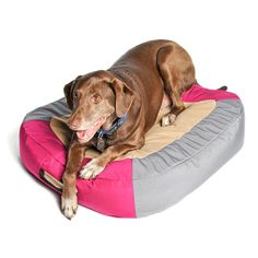 AstroPad Dog Bed M Cranberry