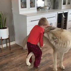 Little boy singing with his friend. - Stefanie - Little boy singing with his friend. Cute Funny Animals, Cute Baby Animals, Funny Dogs, Animals And Pets, Cute Puppies, Cute Dogs, Cute Babies, Cute Animal Videos, Funny Animal Pictures
