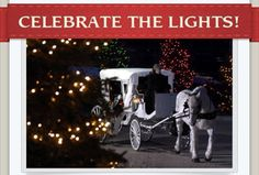 19 more sleeps and counting until the big night! Have you RSVP'd yet?  Join us Sunday December 20th for horse and buggy rides to see Christmas lights in Lakeshore Woods, music, coloring contest, prizes and much more.  When: Sunday December 20th 6:30-8:30pm Where: 321 Nautical Blvd.,Lakeshore Woods, Oakville Cost: FREE but we ask you kindly make a donation to Easter Seals at the event no donation is too big or small!  RSVP NOW AT: http://www.celebratethelights.com/