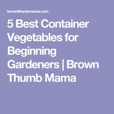 5 Best Container Vegetables for Beginning Gardeners   Brown Thumb Mama