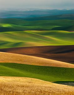 Rolling hills and fields of green
